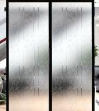 젖빛 유리, 장식적인 유리, 문을%s 오목한 유리