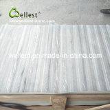 De Witte Marmeren Tegel van China voor Villa/de Vloer van het Huis/van het Hotel en de Bekleding van de Muur