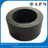 De permanente Gesinterde Ringen van het Ferriet van het Ferriet Ceramische Magneet voor Micro- Motor