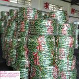 Größe 250-17, 300-17, 275-18, Reifen des gute Qualitäts-300-18 ISO-Nylonmotorrad-6pr
