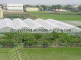 ベストセラーの製品の農産物のミバエは/Vegetablesの反はえネットの/Greenhouseの反昆虫のネットを得る