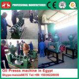 De nieuwe Grote Pers van de Olie van de Kokosnoot van de Capaciteit 25-30t, de Machine van de Extractie van de Olie