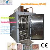 Schnelle Gefriermaschine/Tiefkühlverfahren-Maschine/Böe-Gefriermaschine (QF-D2)