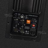 Skytone Prx618s 18 Zoll angeschaltenes Subwoofer