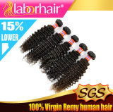 Menschliches Malaysian Kinky Curly Natural Virgin Hair 7A Remy Grade Extension Lbh 026