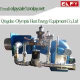 Industrieller Dieselöl-Brenner mit beständiger Leistung