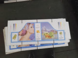 Macchina di scanalatura Chain semi automatica di stampa di Flexo dell'alimentatore