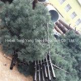 Personalizada de Fábrica Q235 Torre da palmeira de Aço