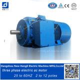 Motores de indução de controle, motores de indução de fase 3
