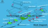 완전히 전자 움직임 통제 자동적인 포장기