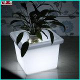 Geleuchteter Garten-Blumen-Potenziometer LED leuchten im Freienpflanzern