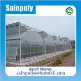 Mayorista de alta calidad Plastic-Film Multi-Span invernadero hidropónico de