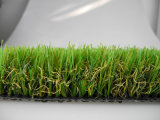 Garden Grass, Landscaping Grass (L35V)