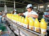 Mangofrucht-Saftverarbeitung-Zeile Pflanzenmangofrucht-Saftverarbeitung-Maschinen-Wassermelone-Saftverarbeitung-Pflanzensaftverarbeitung, Maschine herstellend