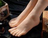 1: Female Feet Model Footwear Display Modelの1枚のコピー