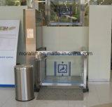 Elevador Disabled vertical Elevotor da cadeira de rodas de Hydralic das vendas da fábrica para a HOME