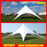 De Tent van de Schaduw van de Ster van pvc voor OpenluchtDiameter 14m van de Partij de Gast van Seater van 100 Mensen voor Huur