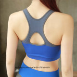 Usura di forma fisica del reggiseno di yoga dell'Rapido-Essiccamento dei vestiti delle donne di alta qualità