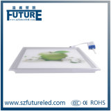 Painel do diodo emissor de luz da iluminação da HOME da cozinha da iluminação de 300 x 300 diodos emissores de luz