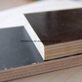 Schwarzes Aufbau-Furnierholz für Gebäude