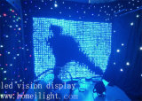 DJ Decoration LED Vision Curtain met Flexible Star