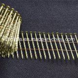 De gegalvaniseerde Frame Spijker van de Rol van het Staal voor Houten Pallet (STCN02)