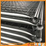 L'Australia ha galvanizzato la rete fissa della rete metallica del ferro