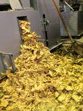 Máquina da imprensa de petróleo da soja do uso de Indusrial para o petróleo que esmaga a fábrica