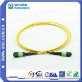 Kabel MPO/MTP van het Koord van het Flard van de vezel de Optische
