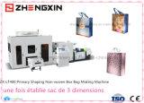 Saco não tecido uma vez Finished automático da caixa que faz a máquina Zx-Lt400
