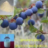 Ab-8 Macroporous Geniposide Adsorption résine utilisée pour extraire (AB-8)