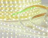 L'indicatore luminoso decorativo 110V/230V 5050SMD impermeabilizza l'indicatore luminoso di striscia di ETL LED