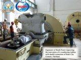Конденсирующ & извлекающ контрактор электростанции турбины пара