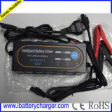 12V 2A/3A/4A Литий/LiFePO4 зарядное устройство для аккумулятора с маркировкой CE&PSE