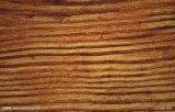 imprimante UV de 1.0*1.3m pour le bois d'impression, PVC, pp