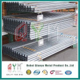 Metal T Fence Post/Steel Metal T Bar Fence Post