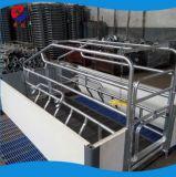 Эффективного с точки зрения классической Farrowing Crate-Suitable для всех фермах свиней