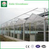 Estrutura de aço galvanizado tampa de vidro usado estufas comerciais