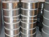 Fil de bobine en titane de haute qualité à des fins médicales