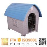 Großes im Freienhundeplastikhaus