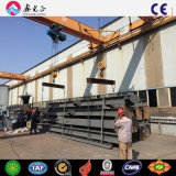 Almacén de la estructura de acero de las plantas industriales