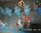 L'acier inoxydable sanitaire a vidé la double pompe centrifuge de joint mécanique (ACE-B-X4)