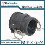 Camlocks femminili/Kamlock/accoppiatore del poli propilene superiore 3 ''