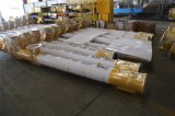 Transporte aprovado da espiral do transporte de parafuso de Lsy do concreto/cimento do Ce