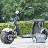 2018 Venta caliente adulto moto Scooter eléctrico con retirar la batería