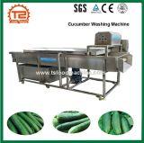 감자 식물성 오이 세탁기