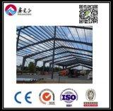 Qualität kundenspezifisches Stahlkonstruktion-Lager (BYSS035)