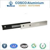 De aangepaste Uitdrijving van het Aluminium voor het Comité van het Gezicht met CNC het Machinaal bewerken