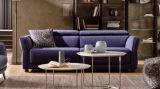 Sofa moderne pour le sofa de tissu de meubles de sofa de salle de séjour