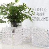 glaswerk van de Bloem van het Glas van de Vaas van 10*10cm het In het groot Duidelijke Vierkante